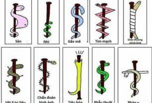 biểu tượng ngành y dược